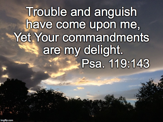 Trouble and anguish have come upon me, Yet Your commandments are my delight. Psa. 119:143 | image tagged in anguish | made w/ Imgflip meme maker