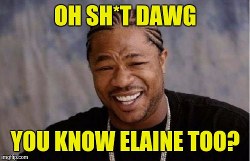 Yo Dawg Heard You Meme | OH SH*T DAWG YOU KNOW ELAINE TOO? | image tagged in memes,yo dawg heard you | made w/ Imgflip meme maker