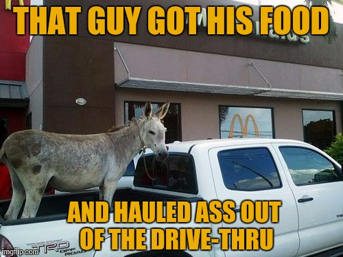 McDonkey | THAT GUY GOT HIS FOOD AND HAULED ASS OUT OF THE DRIVE-THRU | image tagged in hauling ass,mcdonalds,drive thru,memes,animals | made w/ Imgflip meme maker