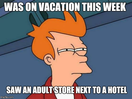 The must get some pretty good business in February! | WAS ON VACATION THIS WEEK SAW AN ADULT STORE NEXT TO A HOTEL | image tagged in memes,futurama fry | made w/ Imgflip meme maker
