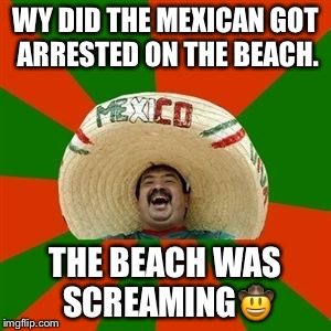 succesful mexican | WY DID THE MEXICAN GOT ARRESTED ON THE BEACH. THE BEACH WAS SCREAMING | image tagged in succesful mexican | made w/ Imgflip meme maker
