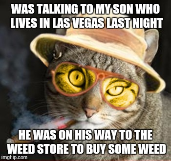 Viva Las Vegas | WAS TALKING TO MY SON WHO LIVES IN LAS VEGAS LAST NIGHT HE WAS ON HIS WAY TO THE WEED STORE TO BUY SOME WEED | image tagged in fear and loathing in las vegas cat country,legalization,funny cat memes,meme,las vegas | made w/ Imgflip meme maker