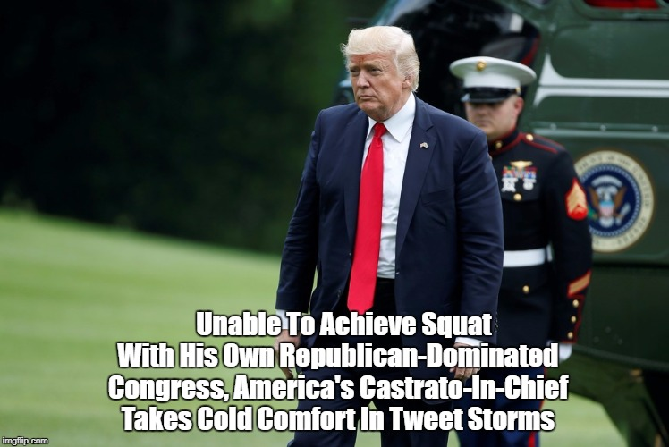 Unable To Achieve Squat With His Own Republican-Dominated Congress, America's Castrato-In-Chief Takes Cold Comfort In Tweet Storms | made w/ Imgflip meme maker