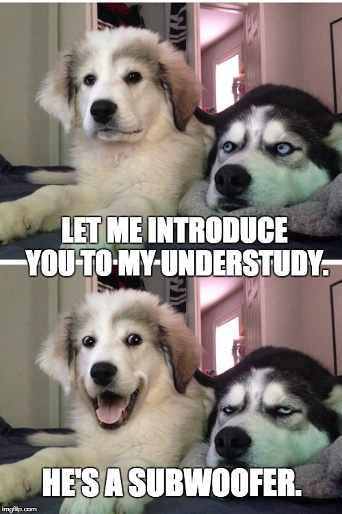 Bad pun dogs | LET ME INTRODUCE YOU TO MY UNDERSTUDY. HE'S A SUBWOOFER. | image tagged in bad pun dogs | made w/ Imgflip meme maker