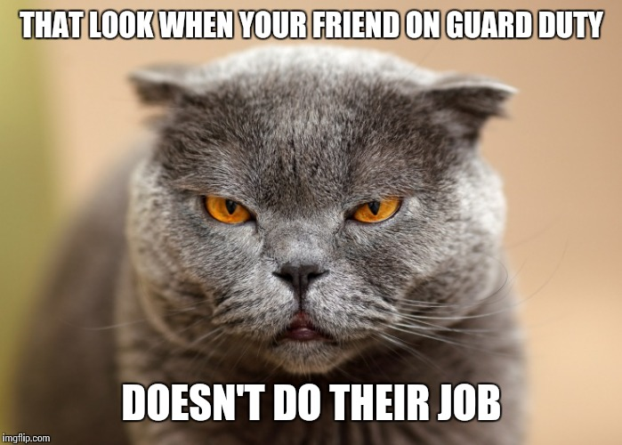 THAT LOOK WHEN YOUR FRIEND ON GUARD DUTY DOESN'T DO THEIR JOB | made w/ Imgflip meme maker