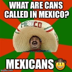succesful mexican | WHAT ARE CANS CALLED IN MEXICO? MEXICANS | image tagged in succesful mexican | made w/ Imgflip meme maker