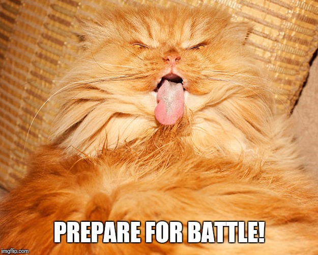 PREPARE FOR BATTLE! | made w/ Imgflip meme maker