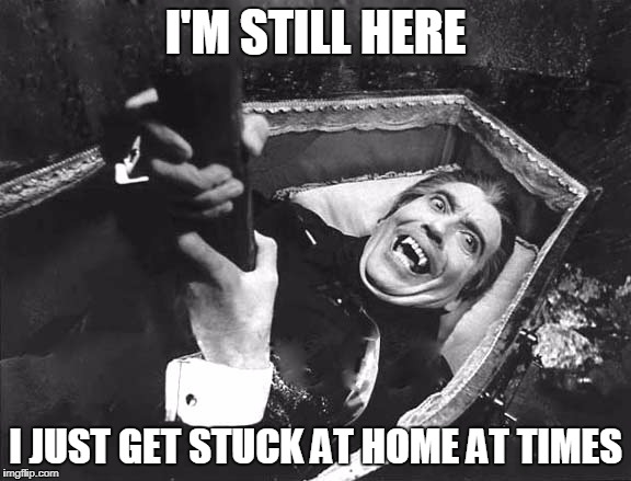 I'M STILL HERE I JUST GET STUCK AT HOME AT TIMES | made w/ Imgflip meme maker