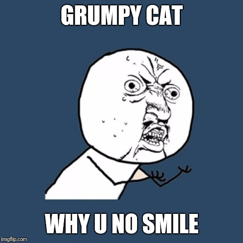 Y U No Meme | GRUMPY CAT WHY U NO SMILE | image tagged in memes,y u no,grumpy cat,smile,fun,funny | made w/ Imgflip meme maker