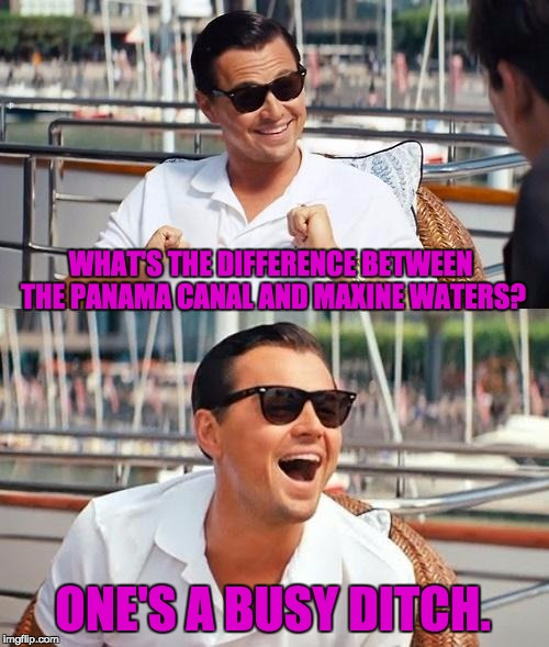 Leonardo Dicaprio Wolf Of Wall Street Meme | WHAT'S THE DIFFERENCE BETWEEN THE PANAMA CANAL AND MAXINE WATERS? ONE'S A BUSY DITCH. | image tagged in memes,leonardo dicaprio wolf of wall street | made w/ Imgflip meme maker