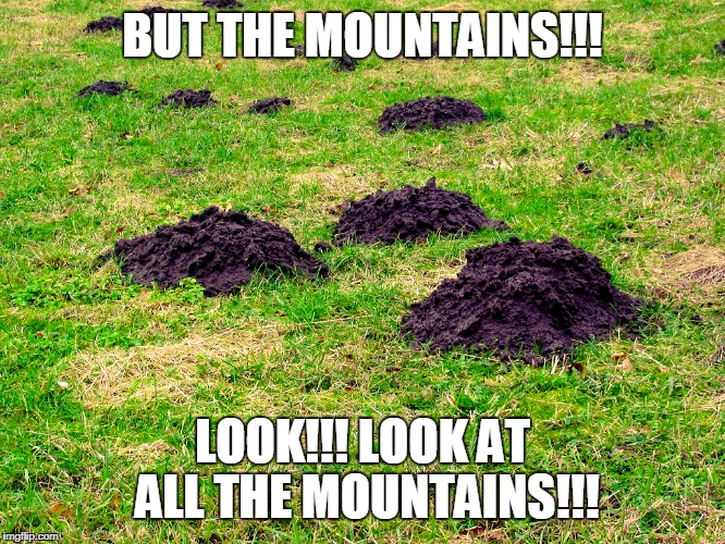 Meanwhile, in Journalism Today | BUT THE MOUNTAINS!!! LOOK!!! LOOK AT ALL THE MOUNTAINS!!! | image tagged in mole hill | made w/ Imgflip meme maker