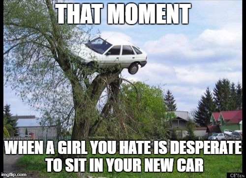Secure Parking Meme | THAT MOMENT WHEN A GIRL YOU HATE IS DESPERATE TO SIT IN YOUR NEW CAR | image tagged in memes,secure parking | made w/ Imgflip meme maker