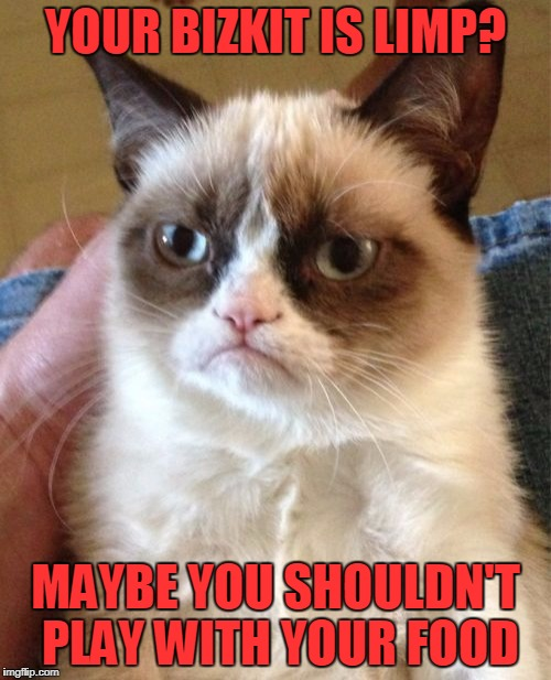 Grumpy Cat Meme | YOUR BIZKIT IS LIMP? MAYBE YOU SHOULDN'T PLAY WITH YOUR FOOD | image tagged in memes,grumpy cat | made w/ Imgflip meme maker