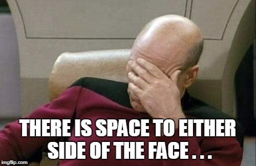Captain Picard Facepalm Meme | THERE IS SPACE TO EITHER SIDE OF THE FACE . . . | image tagged in memes,captain picard facepalm | made w/ Imgflip meme maker