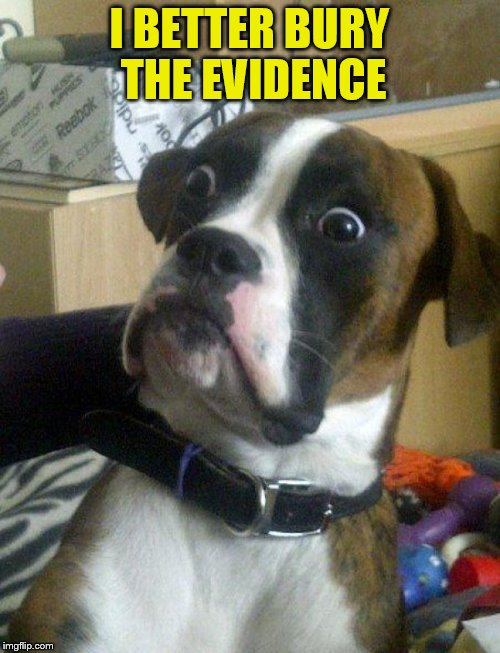 I BETTER BURY THE EVIDENCE | made w/ Imgflip meme maker