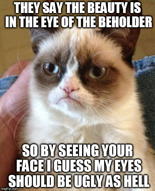 Grumpy Cat Meme | THEY SAY THE BEAUTY IS IN THE EYE OF THE BEHOLDER SO BY SEEING YOUR FACE I GUESS MY EYES SHOULD BE UGLY AS HELL | image tagged in memes,grumpy cat | made w/ Imgflip meme maker
