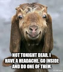 NOT TONIGHT DEAR. I HAVE A HEADACHE. GO INSIDE AND DO ONE OF THEM. | made w/ Imgflip meme maker