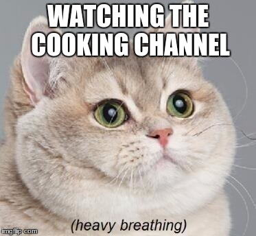 flavor town indeed | WATCHING THE COOKING CHANNEL | image tagged in memes,heavy breathing cat | made w/ Imgflip meme maker