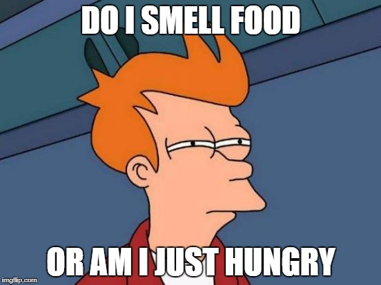 Futurama Fry Meme | DO I SMELL FOOD OR AM I JUST HUNGRY | image tagged in memes,futurama fry | made w/ Imgflip meme maker