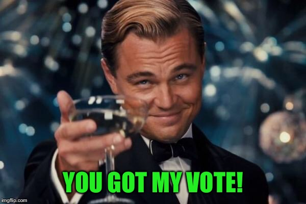 Leonardo Dicaprio Cheers Meme | YOU GOT MY VOTE! | image tagged in memes,leonardo dicaprio cheers | made w/ Imgflip meme maker