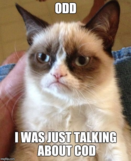 Grumpy Cat Meme | ODD I WAS JUST TALKING ABOUT COD | image tagged in memes,grumpy cat | made w/ Imgflip meme maker