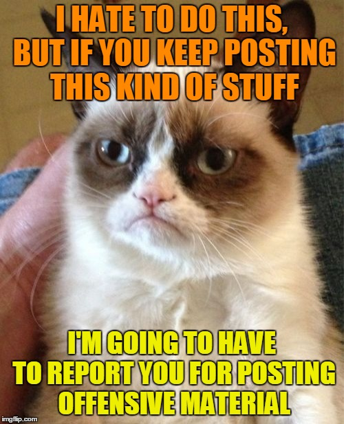 Grumpy Cat Meme | I HATE TO DO THIS, BUT IF YOU KEEP POSTING THIS KIND OF STUFF I'M GOING TO HAVE TO REPORT YOU FOR POSTING OFFENSIVE MATERIAL | image tagged in memes,grumpy cat | made w/ Imgflip meme maker