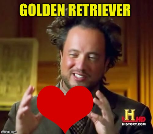 Ancient Aliens Meme | GOLDEN RETRIEVER | image tagged in memes,ancient aliens | made w/ Imgflip meme maker