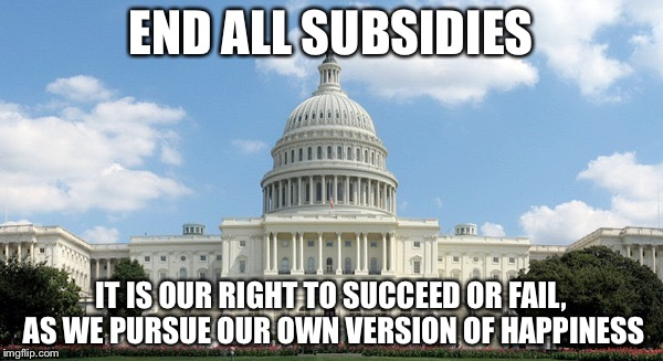 END ALL SUBSIDIES IT IS OUR RIGHT TO SUCCEED OR FAIL, AS WE PURSUE OUR OWN VERSION OF HAPPINESS | image tagged in ugh congress | made w/ Imgflip meme maker