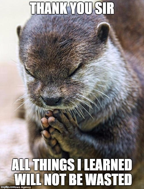 Thank you Lord Otter | THANK YOU SIR ALL THINGS I LEARNED WILL NOT BE WASTED | image tagged in thank you lord otter | made w/ Imgflip meme maker