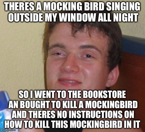 10 Guy Meme | THERES A MOCKING BIRD SINGING OUTSIDE MY WINDOW ALL NIGHT SO I WENT TO THE BOOKSTORE AN BOUGHT TO KILL A MOCKINGBIRD AND THERES NO INSTRUCTI | image tagged in memes,10 guy | made w/ Imgflip meme maker