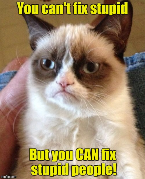 Snip, snip! | You can't fix stupid But you CAN fix stupid people! | image tagged in memes,grumpy cat,stupid people | made w/ Imgflip meme maker