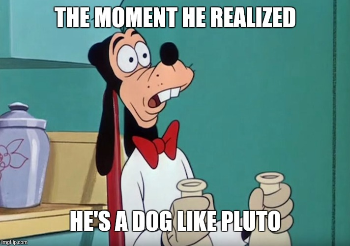 Shocked Goofy | THE MOMENT HE REALIZED HE'S A DOG LIKE PLUTO | image tagged in shocked goofy | made w/ Imgflip meme maker
