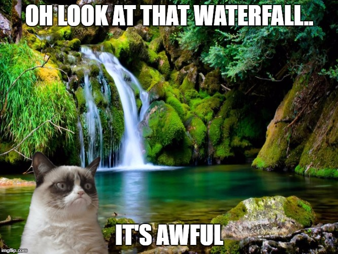 OH LOOK AT THAT WATERFALL.. IT'S AWFUL | image tagged in memes,grumpy cat,nature | made w/ Imgflip meme maker