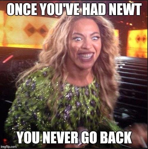Memes, Beyonce | ONCE YOU'VE HAD NEWT YOU NEVER GO BACK | image tagged in memes,beyonce | made w/ Imgflip meme maker