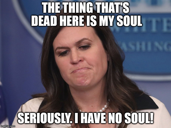 THE THING THAT'S DEAD HERE IS MY SOUL SERIOUSLY. I HAVE NO SOUL! | image tagged in sarah huckabee sanders | made w/ Imgflip meme maker