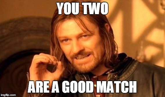 One Does Not Simply Meme | YOU TWO ARE A GOOD MATCH | image tagged in memes,one does not simply | made w/ Imgflip meme maker