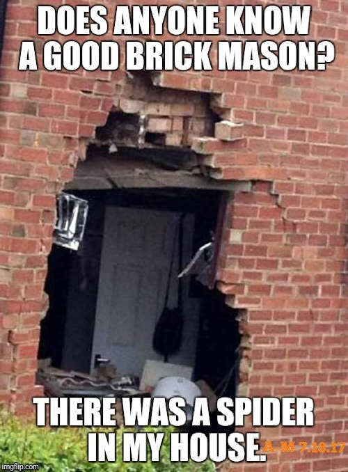 NOPE! | image tagged in spiders,nope,fear,kill it with fire,oh hell no | made w/ Imgflip meme maker