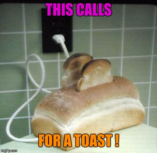 Memes, funny, toast | THIS CALLS FOR A TOAST ! | image tagged in memes,funny,toast | made w/ Imgflip meme maker