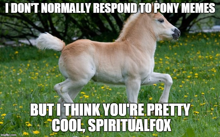 I DON'T NORMALLY RESPOND TO PONY MEMES BUT I THINK YOU'RE PRETTY COOL, SPIRITUALFOX | made w/ Imgflip meme maker