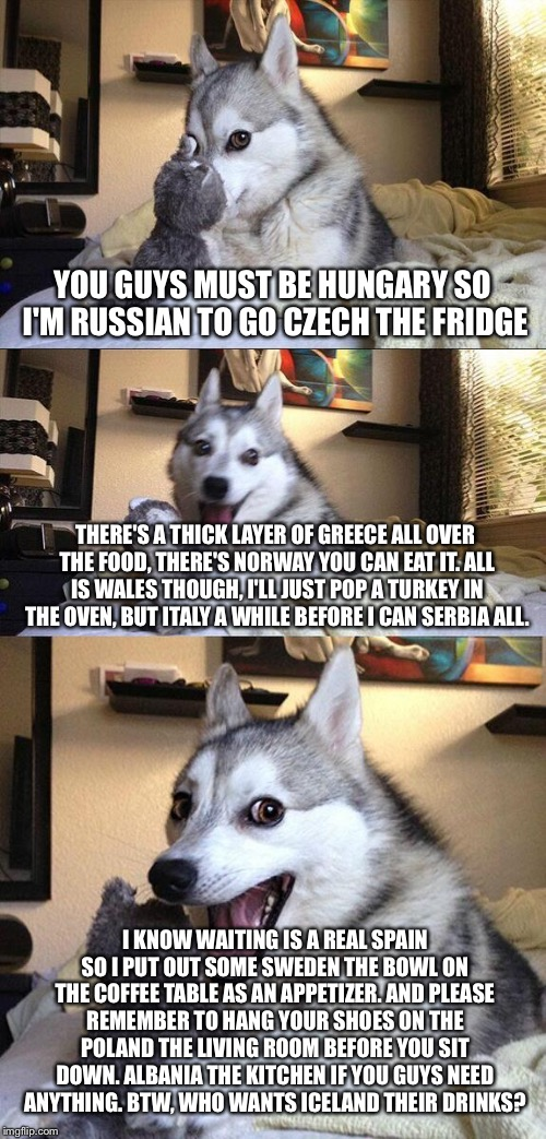 Bad pun dinner party | YOU GUYS MUST BE HUNGARY SO I'M RUSSIAN TO GO CZECH THE FRIDGE THERE'S A THICK LAYER OF GREECE ALL OVER THE FOOD, THERE'S NORWAY YOU CAN EAT | image tagged in memes,bad pun dog | made w/ Imgflip meme maker
