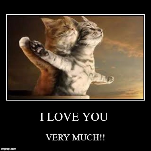 I LOVE YOU | VERY MUCH!! | image tagged in funny,demotivationals | made w/ Imgflip demotivational maker