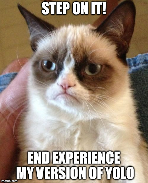 Grumpy Cat Meme | STEP ON IT! END EXPERIENCE MY VERSION OF YOLO | image tagged in memes,grumpy cat | made w/ Imgflip meme maker