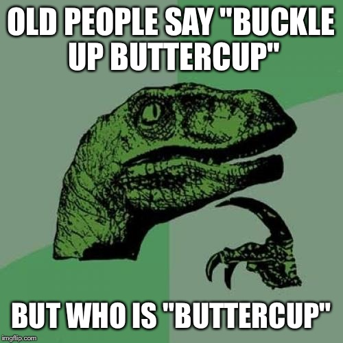"Philosoraptor Meme | OLD PEOPLE SAY ""BUCKLE UP BUTTERCUP"" BUT WHO IS ""BUTTERCUP"" 