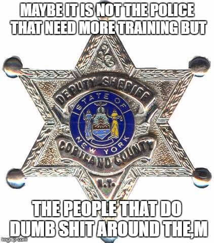 MAYBE IT IS NOT THE POLICE THAT NEED MORE TRAINING BUT THE PEOPLE THAT DO DUMB SHIT AROUND THE,M | image tagged in badge | made w/ Imgflip meme maker