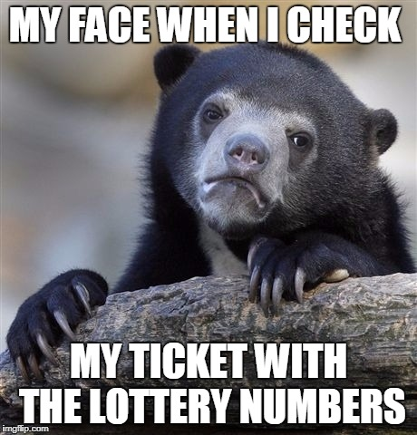 Confession Bear Meme | MY FACE WHEN I CHECK MY TICKET WITH THE LOTTERY NUMBERS | image tagged in memes,confession bear | made w/ Imgflip meme maker