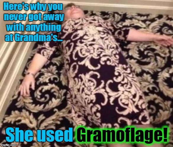 Stolen from Evilmandoevil! Stolen Memes Week™ an AndrewFinlayson event | Here's why you never got away with anything at Grandma's... She used Gramoflage! Gramoflage! | image tagged in gramoflage,memes,funny,evilmandoevil,shamelessly stolen,stolen memes week | made w/ Imgflip meme maker