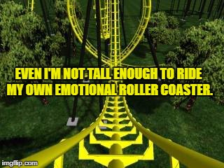roller coaster |  EVEN I'M NOT TALL ENOUGH TO RIDE MY OWN EMOTIONAL ROLLER COASTER. | image tagged in roller coaster,emotional,funny,funny meme,high maintenance,humor | made w/ Imgflip meme maker
