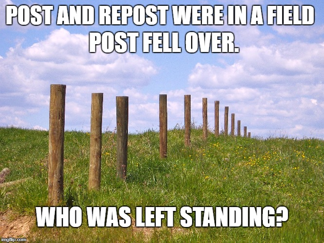 POST AND REPOST WERE IN A FIELD WHO WAS LEFT STANDING? POST FELL OVER. | made w/ Imgflip meme maker