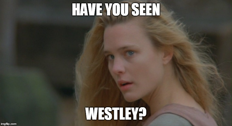 HAVE YOU SEEN WESTLEY? | made w/ Imgflip meme maker