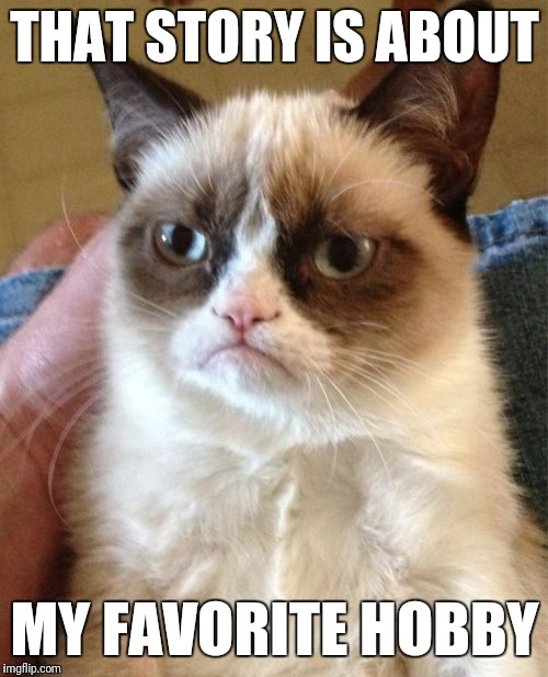 Grumpy Cat Meme | THAT STORY IS ABOUT MY FAVORITE HOBBY | image tagged in memes,grumpy cat | made w/ Imgflip meme maker